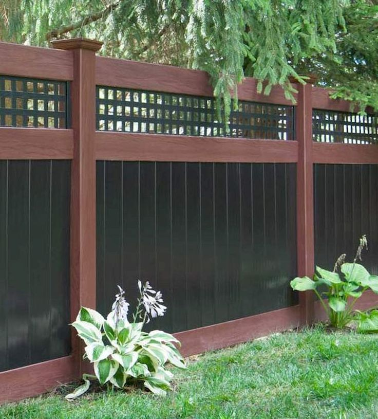 Best 25 Cheap privacy fence ideas on Pinterest  Privacy