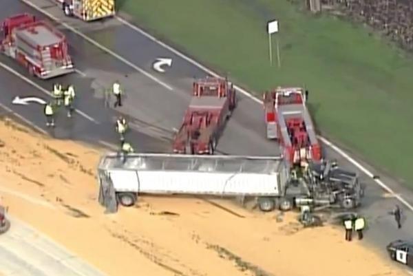 Overturned semi-trailer truck spills corn on Minnesota highway