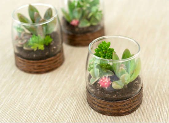How to Make a Small Terrarium - Make the mini-est of the mini terrarium designs using ordinary votive candleholders. With a ring base fashioned from wood veneer edging, these simple-yet-elegant terrariums on Project Wedding can serve daintily as centerpieces for any event that walks the line between casual and classy.