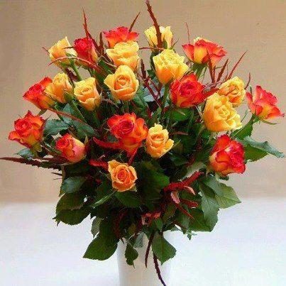 """A rózsa a virágok királynője. - Rózsaszínű rózsák - Rózsák-Virág"""" csodák."""".. magazin - Hotdog.hu"""