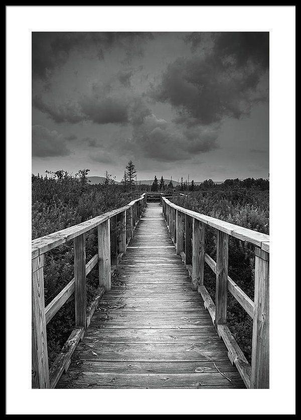 Framed Fine Art Print Black And White Photography Landscape Photography Nature Room Deco Black And White Landscape Landscape Photography Landscape Wall Art