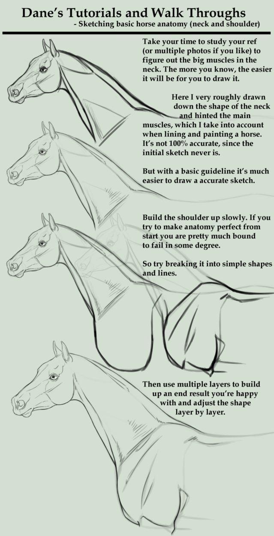 Tutorial/Walk Through - sketching a horse neck etc by AgerskovArt