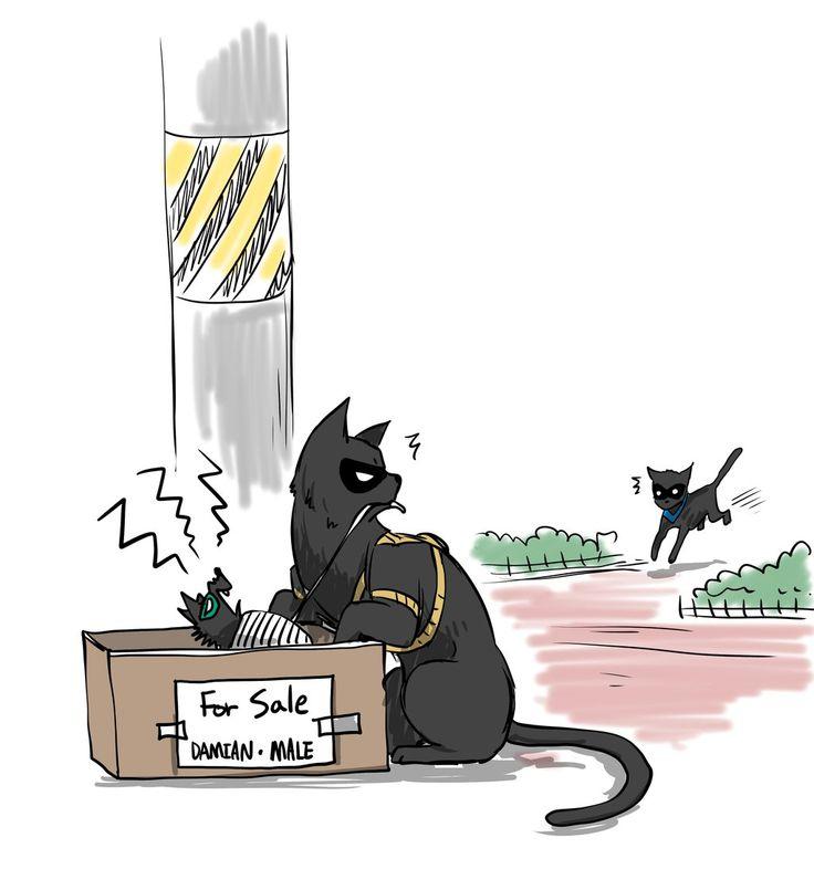 """""""BAT-CAT NOT FAT CAT"""""""