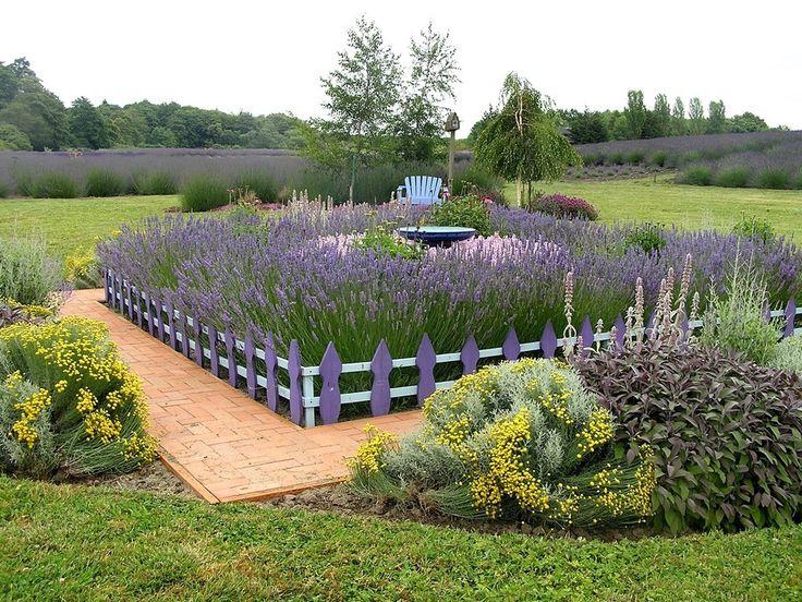 520 best Lavender images on Pinterest | Lavender, Craft and ...