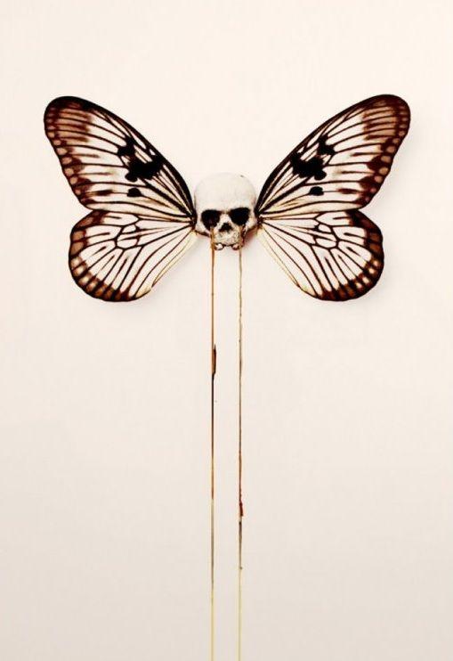 by D*Face #Skulls #Butterfly