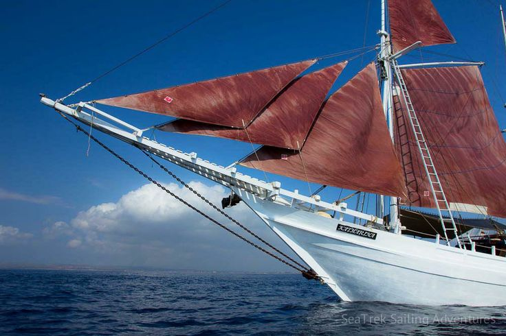 Galleries | SeaTrek Sailing Adventures - seatrek-katharina-phinisi-17