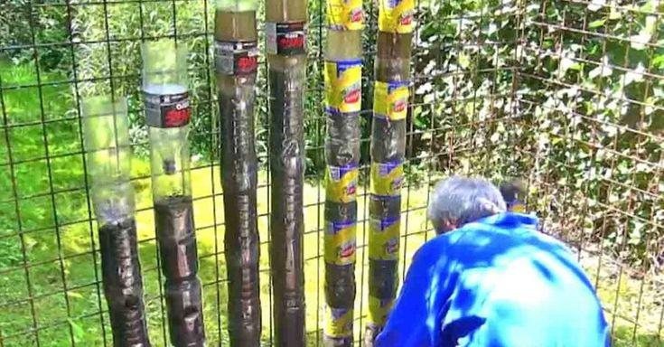 Hij Stapelt Plastic Flessen Ondersteboven Op Elkaar. Wacht Tot Je Zijn Tuin Een Jaar Later Ziet… – Viralmundo