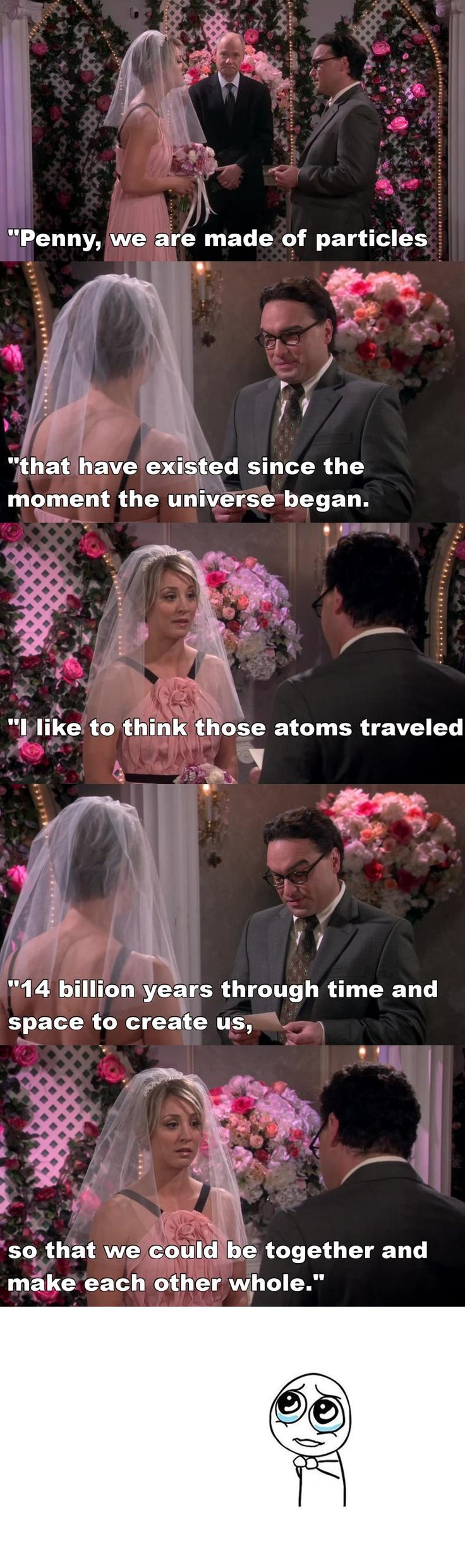 Penny and Leonard's first wedding. TBBT