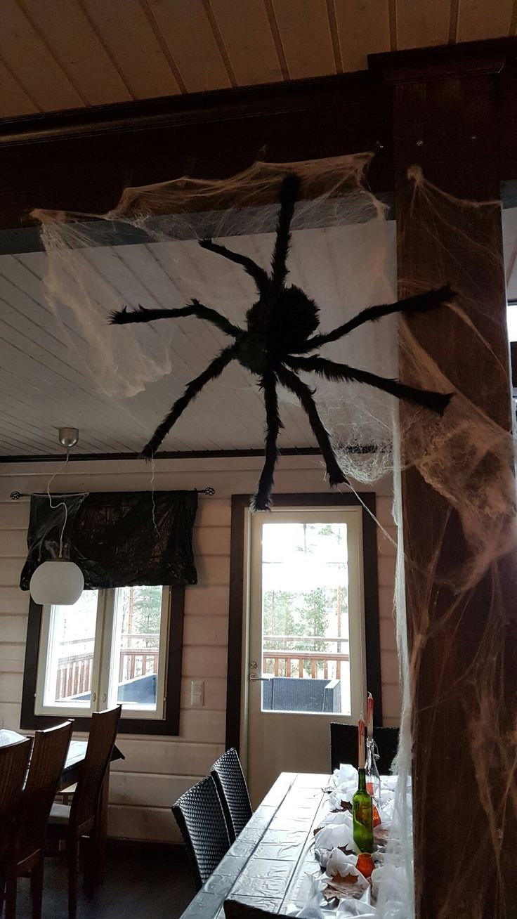 A giant spider!