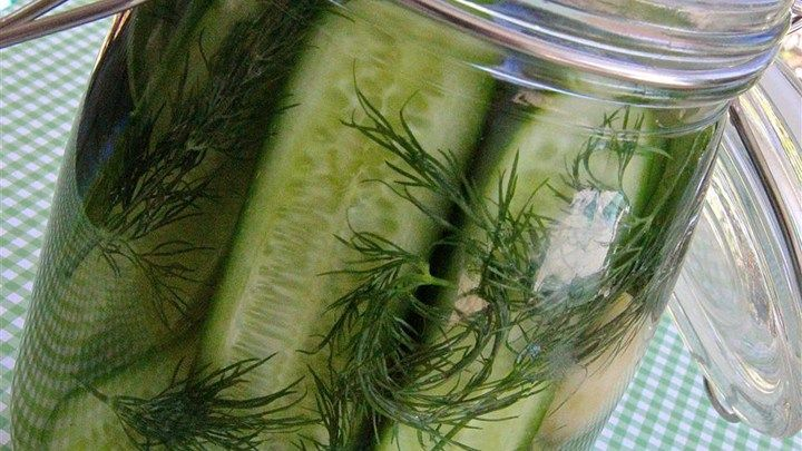 These easy refrigerator dill pickles are perfectly seasoned, crisp, and delicious | I  added white onion, mustard seeds and peppercorns - Delish!
