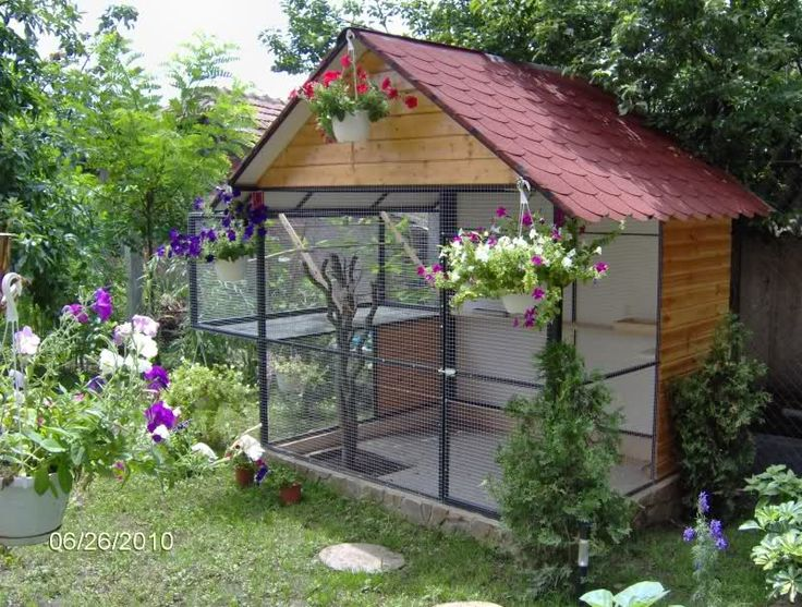 If you placed a hutch inside this for a cosy hideout, & attach a run to the side, this would be ideal for bunnies.