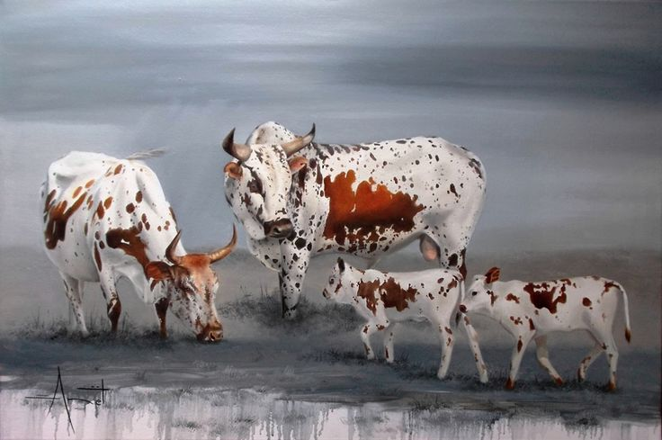 Nguni's oil on canvas 90cm x 60cm