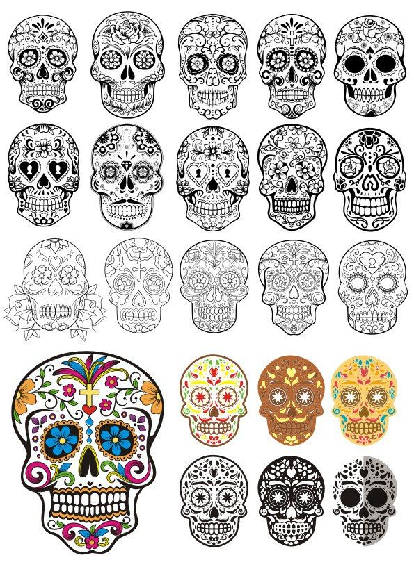 Day Of The Dead Skulls vector art Free Vector cdr Download   Free