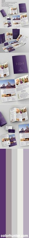4 Pages Bifold Brochure + Trifold + Flyer + Business Cards Color Scheme