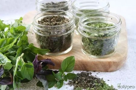 Oven Drying Fresh Herbs #preserving #drying