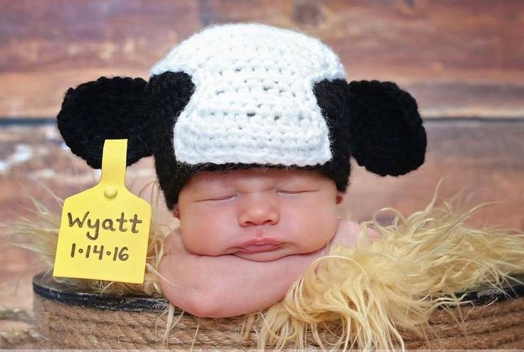 Cute Cow hat with date of baby birth so cute