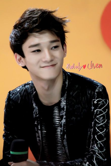 Exceptional Tumblr Cute Girl Bedroom Cozy Teenage Ideas: 382 Best Images About EXO Chen On Pinterest