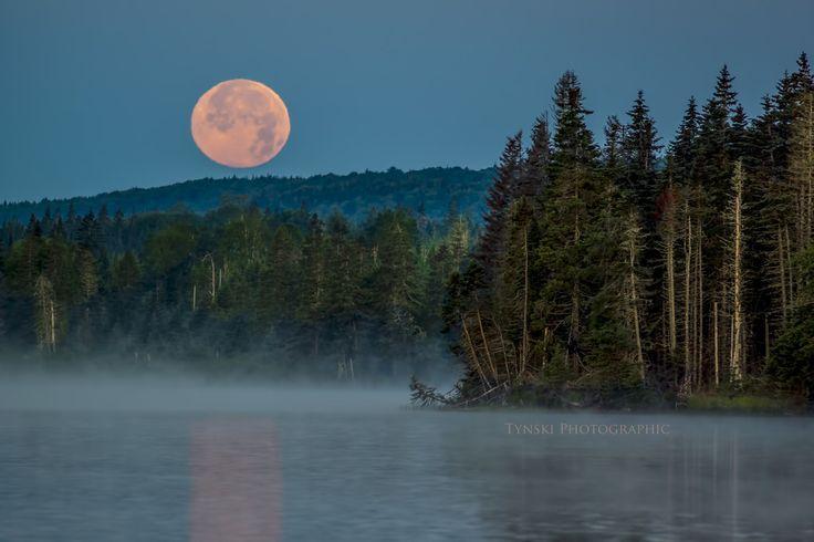 MacAdams Moon