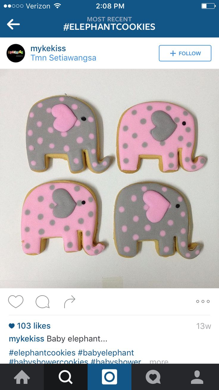 115 best elephant decorated cookies and cake pops images on