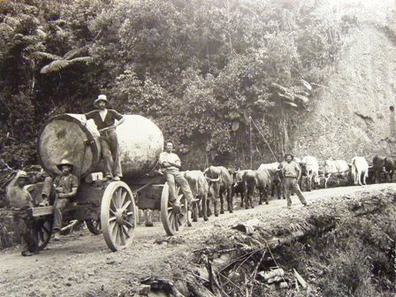 Old Logging Trucks | some of their old photos we found a few of old logging trucks and re ...