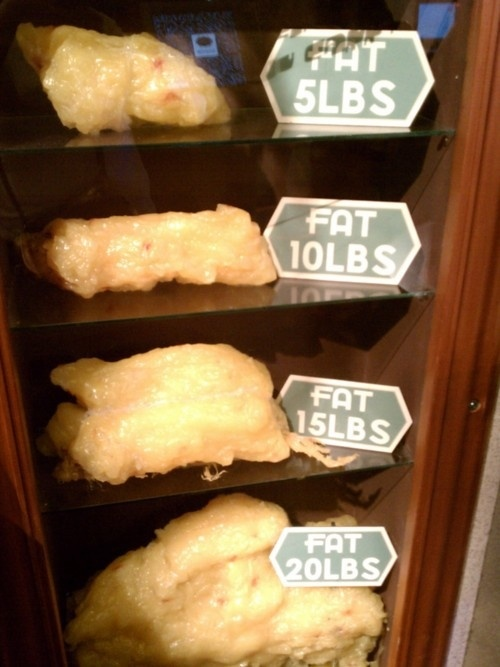 SIZE VERSUS SCALE 1 Pound Of Fat Is 6 Times Larger Than 1 Pound Of Muscle  OR .... 1 Cubic Inch Of Muscle Weighs 6 Times More Than 1 Cubic…