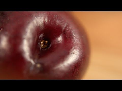 "HOW TO PICK THE PERFECT PRODUCE:: ""Perfect Pickin' - Plums"" by Sprouts Market [Be sure and check out their entire YouTube playlist with a variety of produce!] 