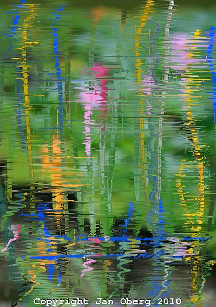 Water Lilies # 1 2010