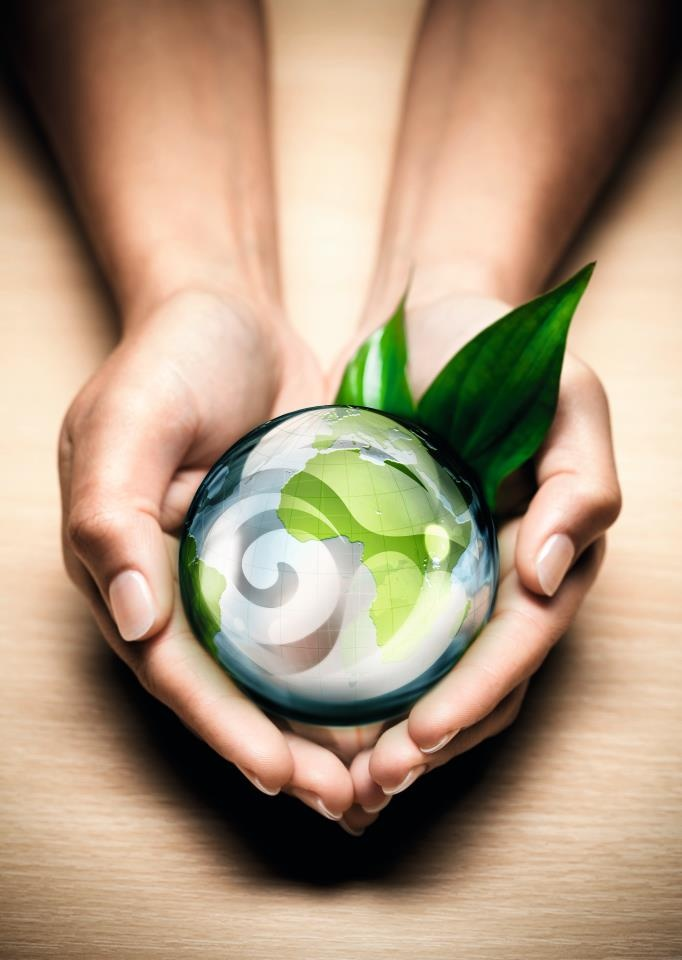 Oriflame is committed to safeguarding the environment. Therefore they have partnered with 4 organisations dedicated to social responsibility, naturalness and care of the environment.