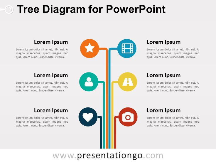 Best 25+ Tree diagram ideas on Pinterest Family tree diagram - tree diagram template