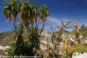 Eze, le nid d'aigle de la Côte d'Azur