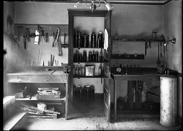 Work bench at plant modelling shop | Flickr - Photo Sharing!