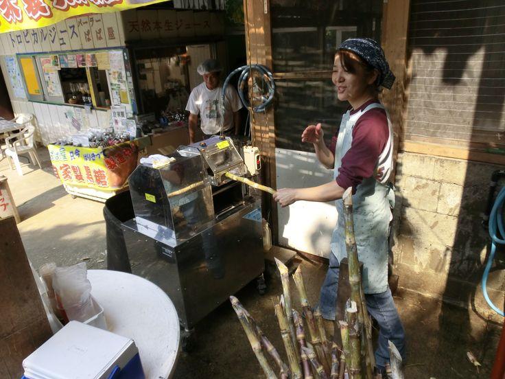pressing cane juice at PAPAYA