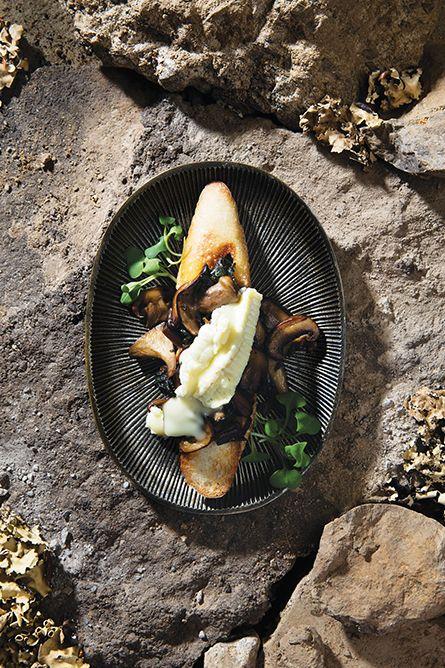 Cette recette est un rêve en deux volets pour tout amateur de champignons. D'abord, la bette à carde, avec son côté végétal presque terreux, rejoint et rehausse les arômes du champignon sauvage.