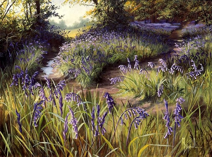 Mary Dipnall — Bluebell Wood
