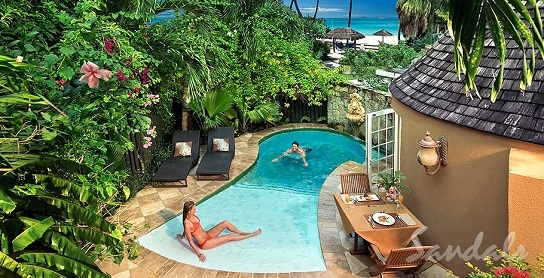 Small Walk In Plunge Pool New Backyard Ideas Pinterest