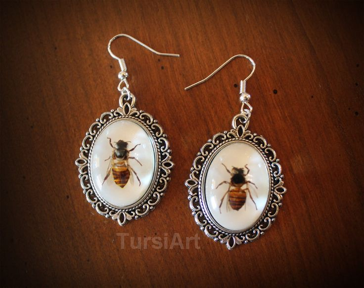 Bee Earrings - Real Honey Bee in Resin choice of copper brass or silver dangle earrings real insect taxidermy real bug in resin bee jewelry by TursiArt on Etsy https://www.etsy.com/listing/218791699/bee-earrings-real-honey-bee-in-resin