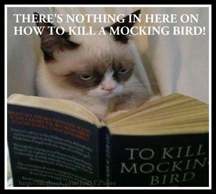 LOL - grumpy cat and my favorite book of all time! :)C
