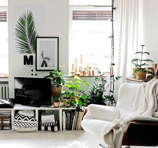 290 besten minza will sommer I blog Bilder auf Pinterest Advent - wohnzimmer mit grun