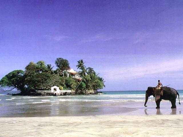 Wish You Were Here: Taprobane Island, Sri Lanka #elephants