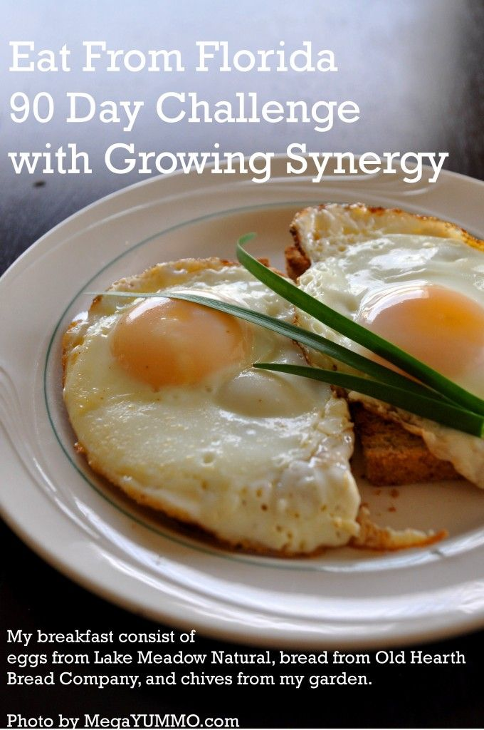 Eat From Florida 90 Day Challenge with Growing Synergy! Are you up for the challenge?