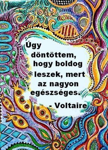 """""""Úgy döntöttem, hogy boldog leszek, mert az nagyon egészséges."""" (Voltaire) - A kép forrása: Útmutató a Léleknek # Facebook"""