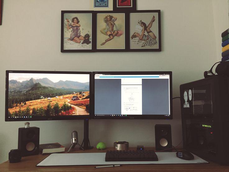Dual monitor arm setup 980ti / i7 4790k