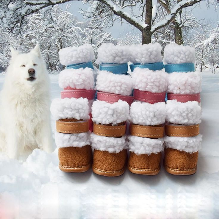 4 Pcs Dress up Dog Pet Cute Puppy Shoes For Small Dog Winter Snow Boots  | eBay