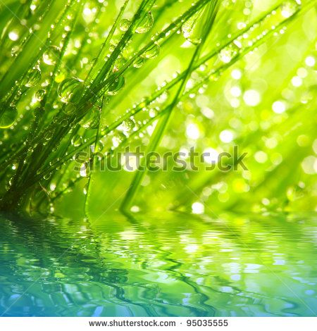 Fresh morning dew on a spring grass in early morning. Sunny day concept. Natural background.