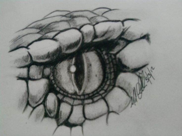 snake eye drawing