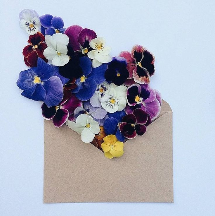 Anna Remarchuk - Flowers Bouquets in Vintage Envelopes – Fubiz Media