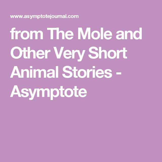 fromThe Mole and Other Very Short Animal Stories - Asymptote