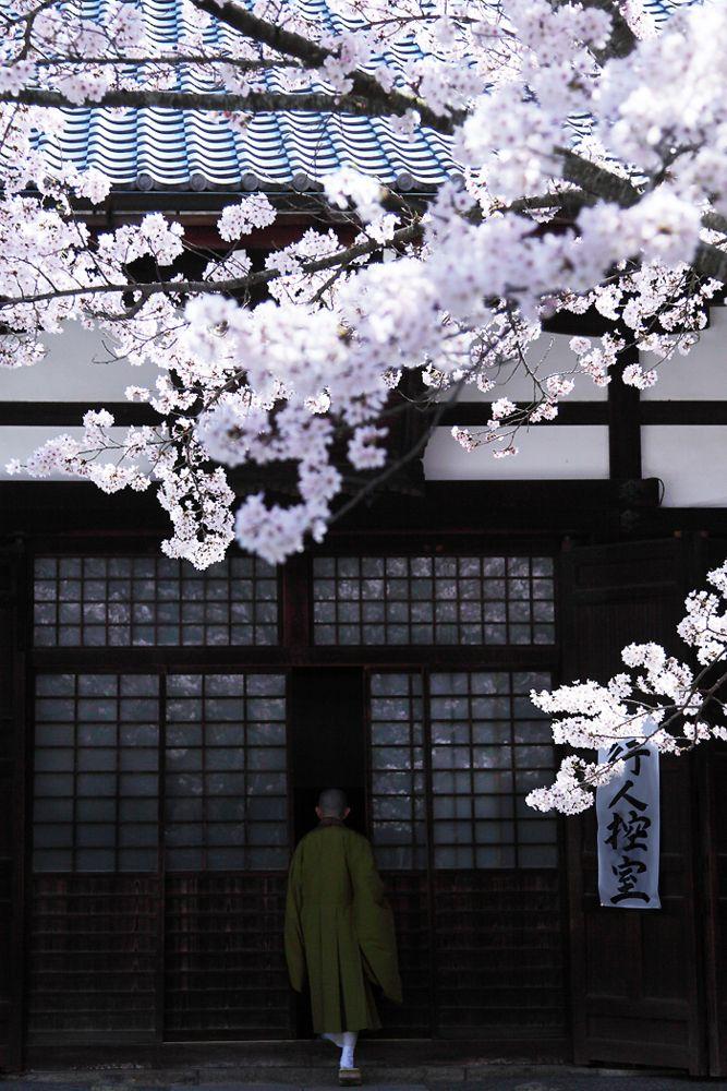 A monk at Komyo-ji temple, Kyoto, Japan