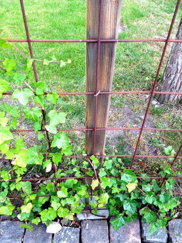 Detta är en ny variant av staket som jag såg när jag var ute på tur! Det är alltså armeringsjärn ihopfogade till ett snyggt staket. Om några...