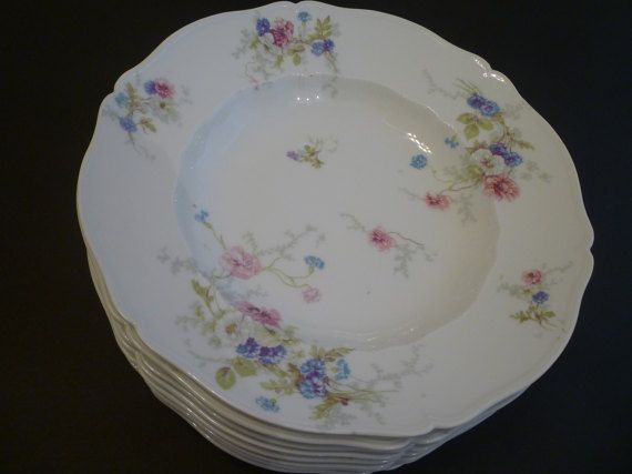 HAVILAND LIMOGES CHINA. Early 1900'S.  91/2